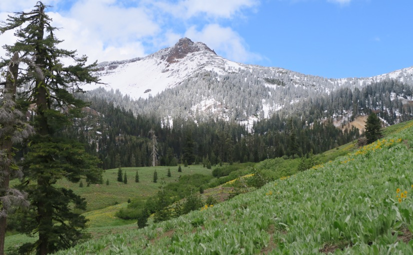 Lassen National Park let down