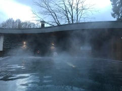 Spa hotel = good idea in winter!