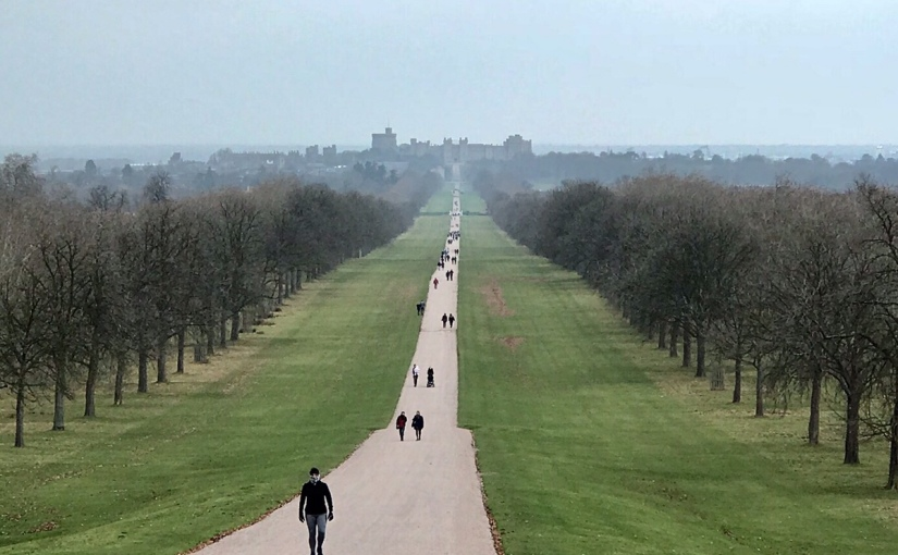 Hiking Windsor Great Park during Winter